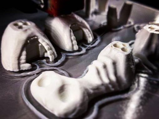 Hellboy Tooth Fairy (Carcharodon calcarea)